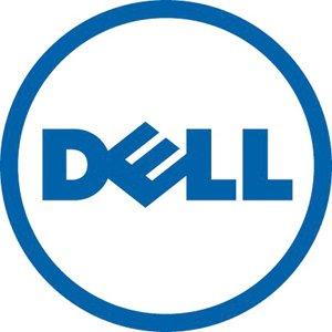Dell_300